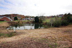 Photo of 2300 Pauly Brook Way, Knoxville, TN 37932 (MLS # 1023270)