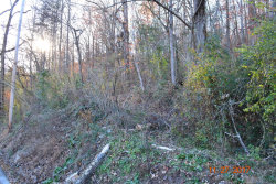 Photo of Hen Valley Rd, Oliver Springs, TN 37840 (MLS # 1023825)