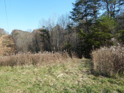 Photo of Old Jacksboro Pike, Heiskell, TN 37754 (MLS # 1024035)