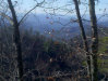 Photo of Red Maple Ln- Lot 19,20,21, Sevierville, TN 37876 (MLS # 1027511)
