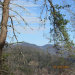 Photo of 21756 Dogwood Loop Rd, Sevierville, TN 37876 (MLS # 1027586)