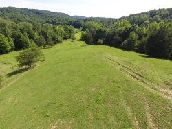 Photo of 482 Massengill Springs Rd, Oliver Springs, TN 37840 (MLS # 1027768)