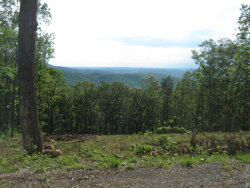 Photo of Renegade Mountain Parkway, Lot # 245, Crab Orchard, TN 37723 (MLS # 1028321)