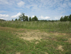 Photo of Sanctuary Shores Way, Lot # 77, Sevierville, TN 37876 (MLS # 1031420)
