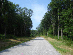 Photo of Lower Eagles Nest Rd, Crab Orchard, TN 37723 (MLS # 1032553)