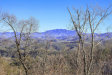 Photo of Laurel Cove Trail, Sevierville, TN 37876 (MLS # 1034292)