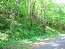 Photo of Sloan Rd, Vonore, TN 37885 (MLS # 1041146)
