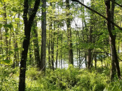 Photo of 905 Kahite Tr, Lot # 8, Vonore, TN 37885 (MLS # 1041612)