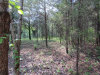Photo of Chetola Trail, Lot # 122, Townsend, TN 37882 (MLS # 1046071)
