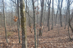 Photo of Eastwood Rd, Lot # 11, Ten Mile, TN 37880 (MLS # 1047113)