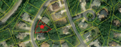 Photo of 509 Tanasi Circle, Lot # 9, Loudon, TN 37774 (MLS # 1052414)