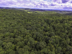 Photo of E Wolf Valley Rd, Heiskell, TN 37754 (MLS # 1056146)