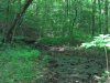 Photo of 731 Tanasi Tr, Lot # 76, Townsend, TN 37882 (MLS # 1056809)