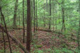 Photo of 429 Chetola Tr, Lot # 104r, Townsend, TN 37882 (MLS # 1056832)