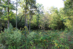 Photo of Mountain Preserve Point Lot 17, Lot # 17, Crab Orchard, TN 37723 (MLS # 1058009)