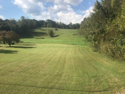Photo of 5622 Hickory Valley Rd, Heiskell, TN 37754 (MLS # 1058605)