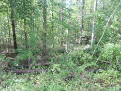 Photo of Sequoyah Lane, Lot # 2 And 41, Andersonville, TN 37705 (MLS # 1059217)