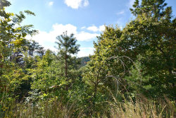 Photo of 2084 Bluff Mountain Rd, Lot # 36-B, Sevierville, TN 37876 (MLS # 1059330)