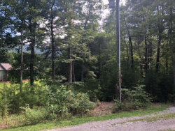 Photo of Lot 19 Roy Lee Way, Lot # 19, Seymour, TN 37865 (MLS # 1059659)