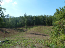 Photo of Chapman Hwy, Sevierville, TN 37862 (MLS # 1059684)