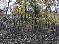 Photo of Hiwassee View Dr #101, Lot # 101, Jacksboro, TN 37757 (MLS # 1062798)