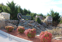 Photo of Lot 11 Sanctuary Shores Way, Sevierville, TN 37876 (MLS # 1063560)