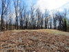 Photo of 910 Pine Cone Way, Lot # 24, Gatlinburg, TN 37738 (MLS # 1063719)