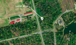 Photo of Lot #68 New Hope Rd, Lot # 68, Rockwood, TN 37854 (MLS # 1065777)