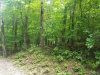 Photo of Watts Drive, Lot # 356, Spring City, TN 37381 (MLS # 1065973)