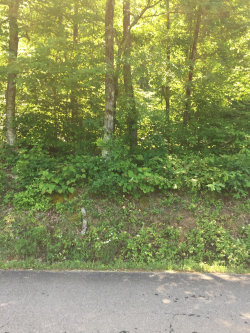 Photo of White Plains Road Rd, Vonore, TN 37885 (MLS # 1066161)