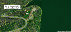 Photo of Emerald Pointe Circle, Lot # 12, Rockwood, TN 37854 (MLS # 1066383)