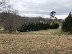 Photo of Lot 64 Abby Lane, Lot # 64, Jacksboro, TN 37757 (MLS # 1066480)