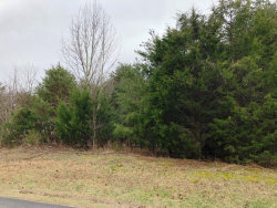 Photo of Gohi Tr, Lot # 15, Vonore, TN 37885 (MLS # 1067056)