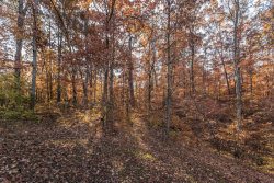 Photo of Oglesby Rd, Knoxville, TN 37914 (MLS # 1067339)