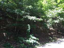 Photo of Lot #5 Rising Fawn, Lot # 5, Sevierville, TN 37862 (MLS # 1067353)