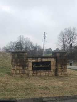 Photo of 5004 Candlewood Court, Lot # 14, Maryville, TN 37804 (MLS # 1069430)