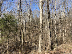 Photo of Shawnee Drive, Jacksboro, TN 37757 (MLS # 1070014)