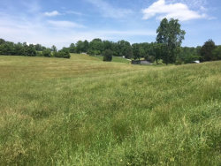 Photo of Red Hill Rd, Lot # 6ar, Andersonville, TN 37705 (MLS # 1070814)