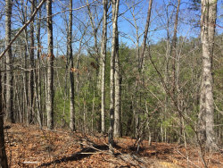 Photo of 245 Mountain Retreat Rd, Lot # 24r, Townsend, TN 37882 (MLS # 1071219)