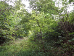 Photo of Pine Hollow Rd, Jacksboro, TN 37757 (MLS # 1071921)
