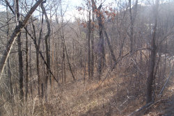 Photo of Lonesome Pine Way, Lot # 17, Sevierville, TN 37862 (MLS # 1081375)