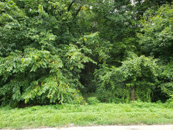 Photo of 1233 Ohio Ave, Knoxville, TN 37921 (MLS # 1087403)