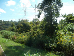 Photo of L-4 Wolf Peak Lane, Lot # 4, Heiskell, TN 37754 (MLS # 976661)