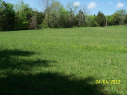 Photo of Cawood Rd, Spring City, TN 37381 (MLS # 986778)