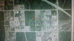 Photo of Barbet Road, Phelan, CA 92371 (MLS # 480823)