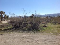 Photo of 2785 Madera Rd Road, Pinon Hills, CA 92372 (MLS # 482999)