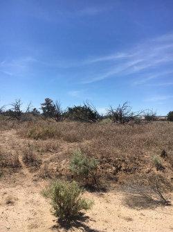 Photo of Whitehaven, Oak Hills, CA (MLS # 486236)
