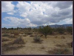 Photo of Pine Tree Road, Pinon Hills, CA 92372 (MLS # 488395)