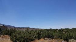 Photo of Sky Line Drive, Pinon Hills, CA 92372 (MLS # 488984)