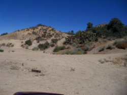 Photo of Pinon Hills, CA 92372 (MLS # 490480)